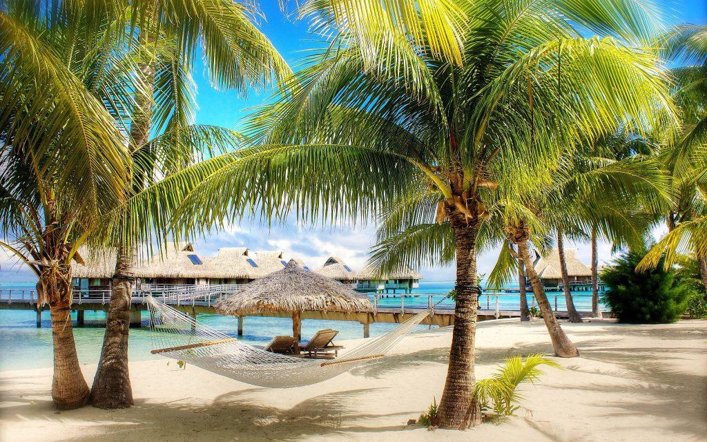 6979062-palm-beach