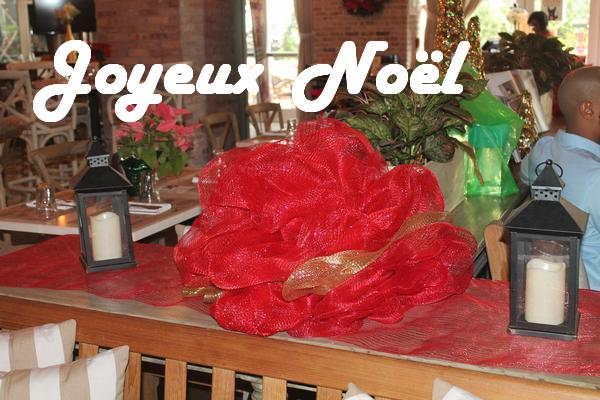 0-Marcelle-Noel-01A