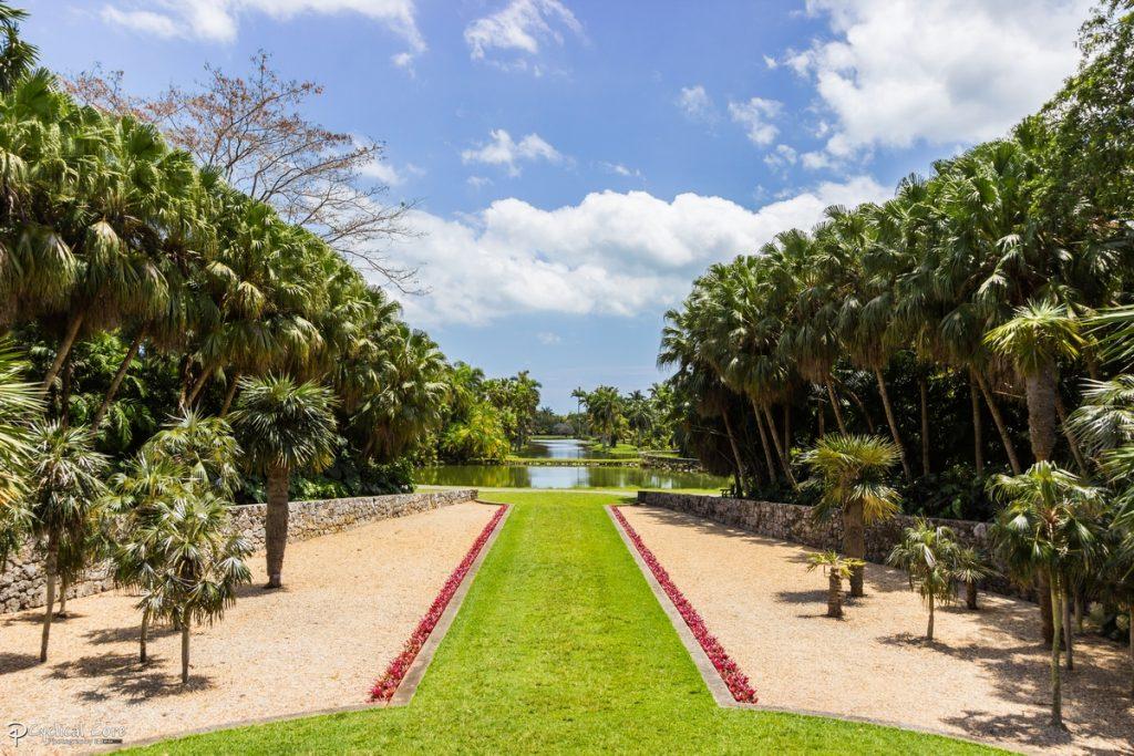 fairchild_tropical_botanical_garden_landscape_3_by_lordmajestros-d7h6s0s