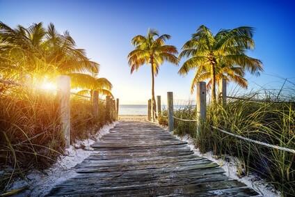 palm-beach-citypage-1